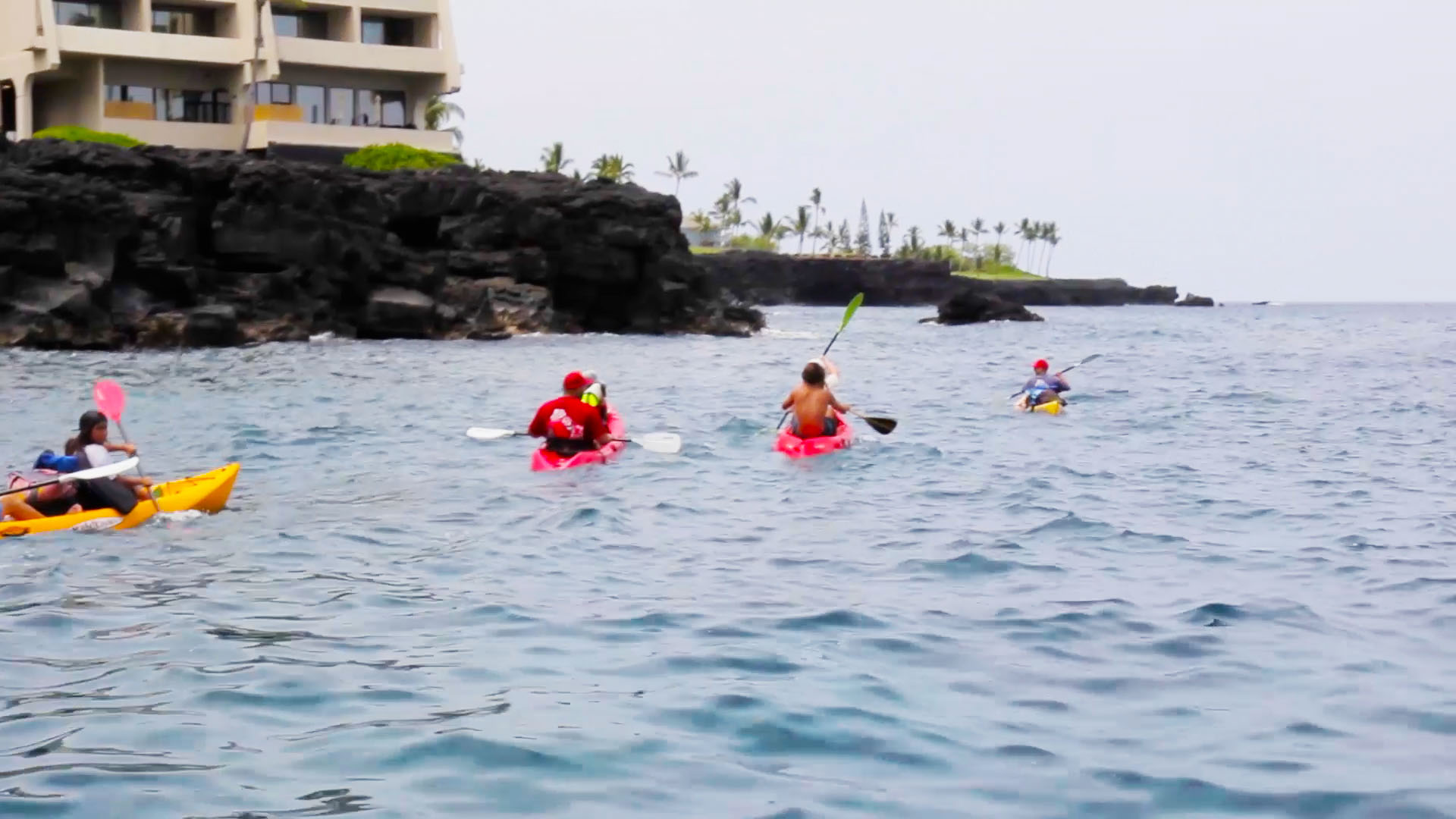 Kayak Adventures on the Kona Coast