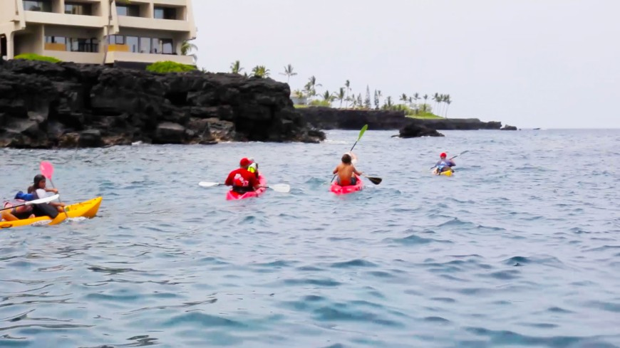 Kayak Adventures on the Kona Coast