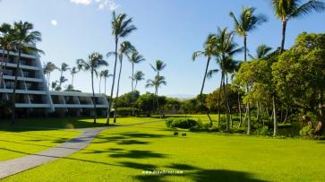 Mauna Lani Bay Back Lawn